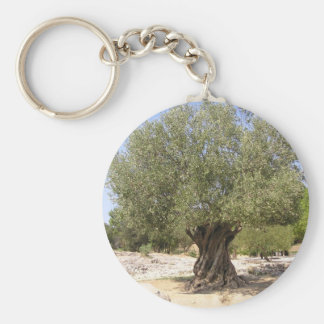 Israel Olive Tree Key Ring