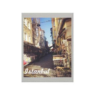 Istanbul Market Poster Canvas Print