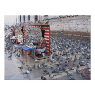 Istanbul Pigeons Being Fed Poster