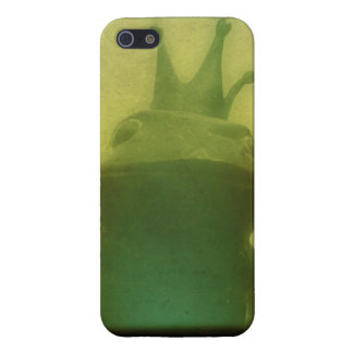 It Ain't Easy Being Green iPhone 5/5S Case
