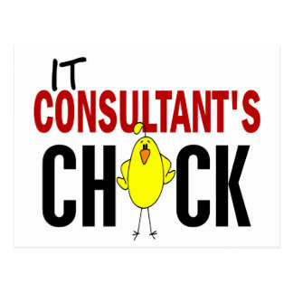 IT CONSULTANT'S CHICK POST CARD