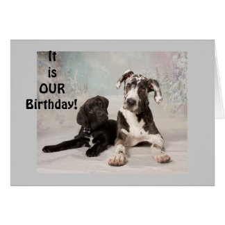 "IT IS ""OUR"" BIRTHDAY-GREAT DAY! CARD"