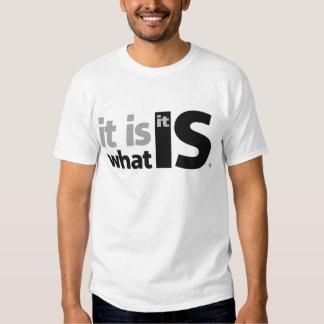 It is What it Is. Shirt