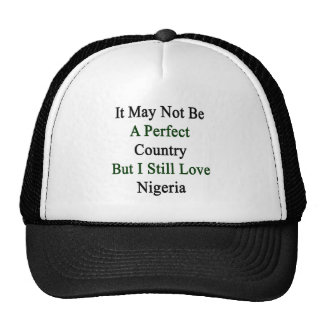It May Not Be A Perfect Country But I Still Love N Trucker Hat