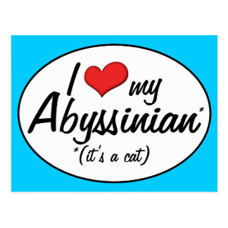 It s a Cat I Love My Abyssinian Postcards