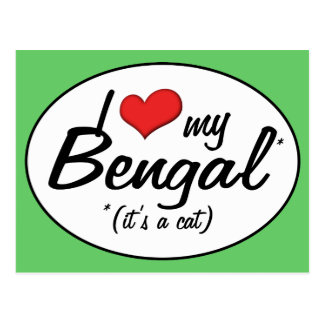It s a Cat I Love My Bengal Post Cards