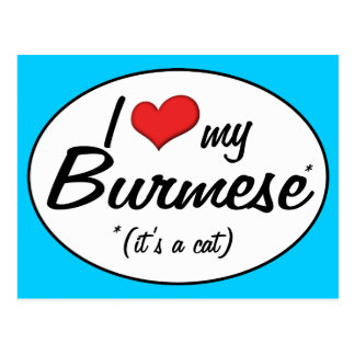 It s a Cat I Love My Burmese Post Cards