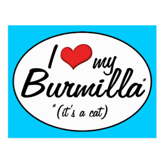 It s a Cat I Love My Burmilla Post Cards