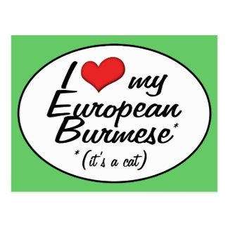 It s a Cat I Love My European Burmese Post Card