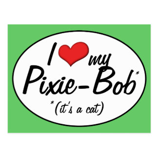 It s a Cat I Love My Pixie-Bob Postcards