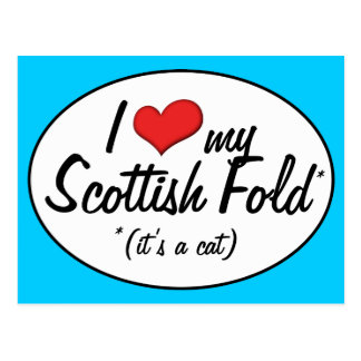It s a Cat I Love My Scottish Fold Postcard