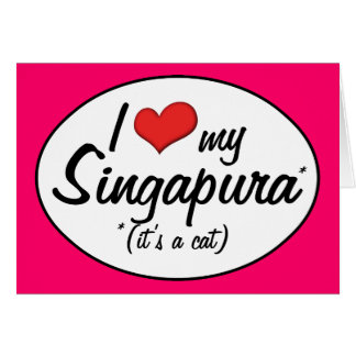 It s a Cat I Love My Singapura Cards
