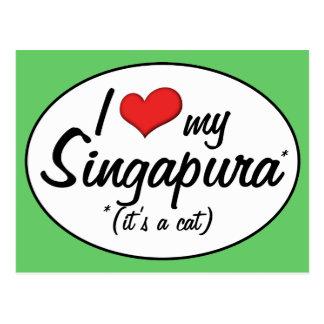 It s a Cat I Love My Singapura Post Card
