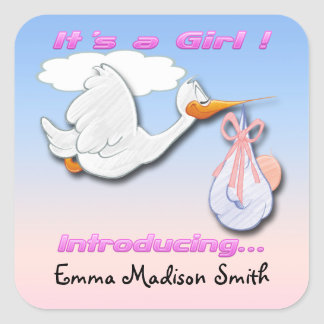 It s a Girl Stork Birth Announcement envelope seal Square Stickers