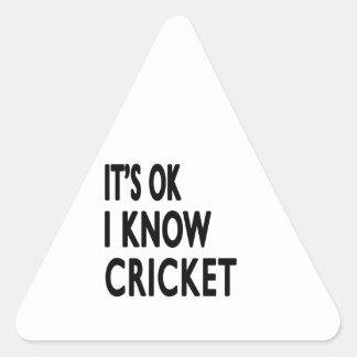It s OK I Know Cricket Dance Triangle Sticker