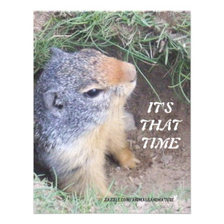 It s That Time Groundhog s day Invitation