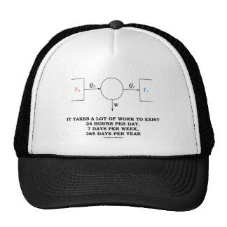 It Takes A Lot Of Work To Exist (Thermodynamics) Hats