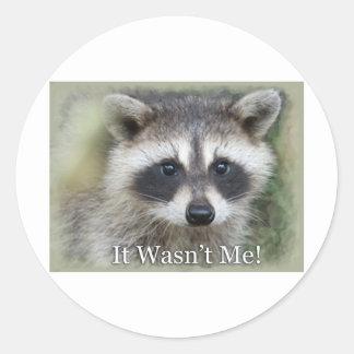 It Wasn't Me! Classic Round Sticker