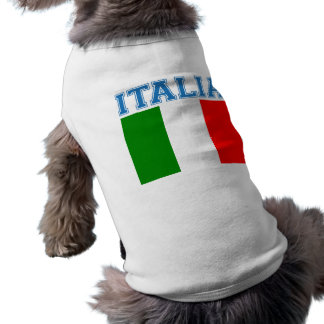 Italia Soccer Sleeveless Dog Shirt