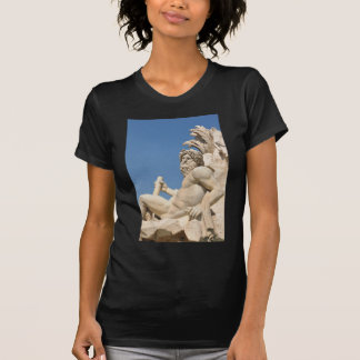 Italian architecture in Piazza Navona,Rome, Italy T-Shirt