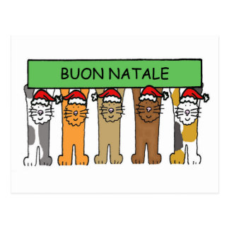 Italian Christmas with cats in Santa hats. Postcard