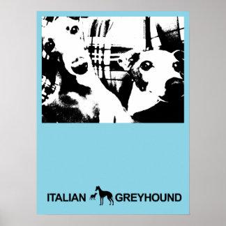 Italian Greyhound Blue Poster