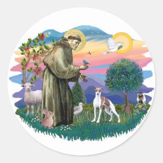 Italian Greyhound (brown-white) Classic Round Sticker
