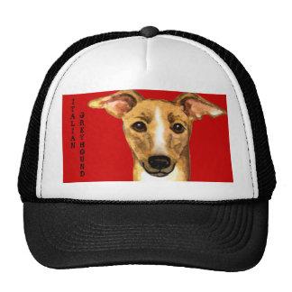 Italian Greyhound Color Block Cap