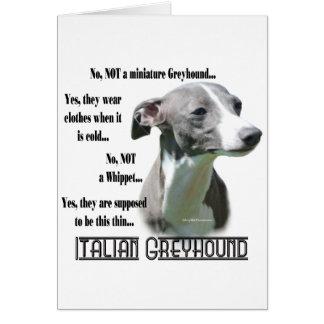 Italian Greyhound FAQ Card