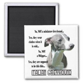 Italian Greyhound FAQ Magnet