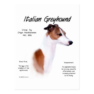 Italian Greyhound History Design Post Cards