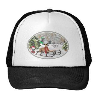 Italian Greyhound Snow Play Apparel Trucker Hat