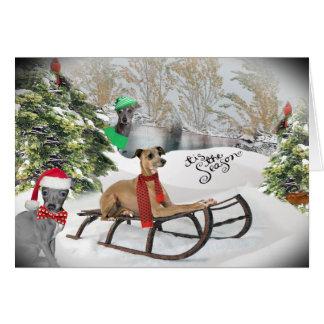 Italian Greyhound Snow Play Cards