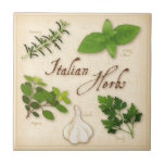 Italian Herbs, Basil, Oregano, Parsley, Garlic Small Square Tile