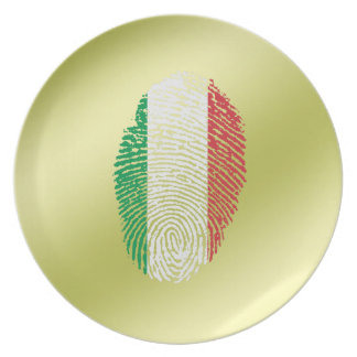 Italian touch fingerprint flag plate