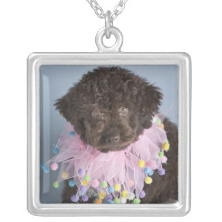 Italian Water Dog (Lagotto) Puppy Silver Plated Necklace