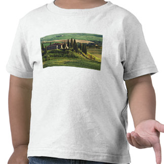Italy A pastoral Tuscany villa in Val d Orcia Tshirt