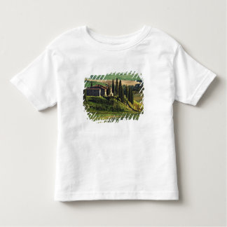 Italy. A pastoral Tuscany villa in Val d'Orcia. Tee Shirt