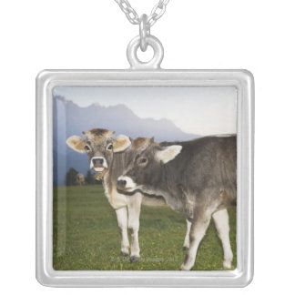 Italy, Alto Adige Silver Plated Necklace