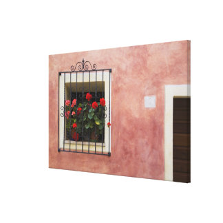 Italy, Asciano, Window Boxes with Fresh Spring Canvas Print