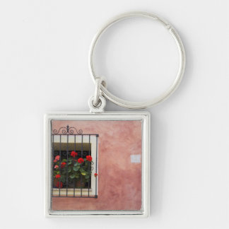 Italy, Asciano, Window Boxes with Fresh Spring Key Ring