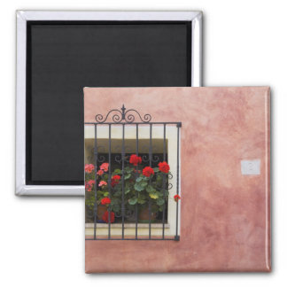 Italy, Asciano, Window Boxes with Fresh Spring Magnet