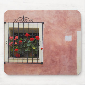 Italy, Asciano, Window Boxes with Fresh Spring Mouse Mat