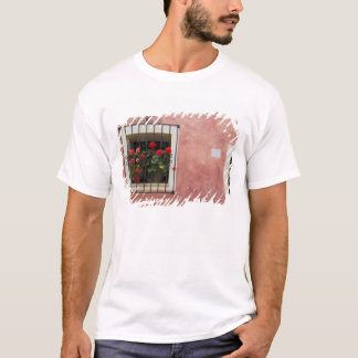 Italy, Asciano, Window Boxes with Fresh Spring T-Shirt