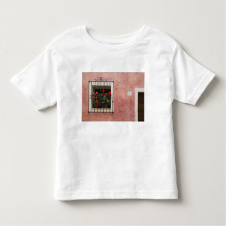 Italy, Asciano, Window Boxes with Fresh Spring Toddler T-Shirt