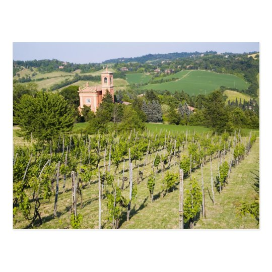 Italy, Bologna, View through Vineyard to Chiesa Postcard