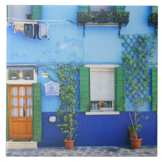 Italy, Burano. A colorful house in Burano near Tile