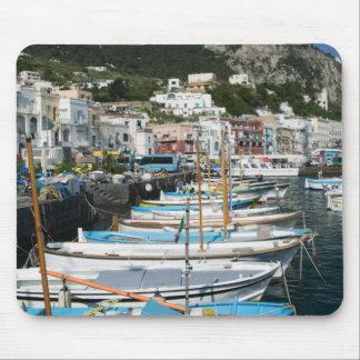 ITALY, Campania, (Bay of Naples), CAPRI: Marina Mouse Mat