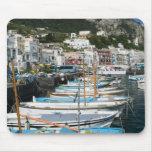 ITALY, Campania, (Bay of Naples), CAPRI: Marina Mousemat