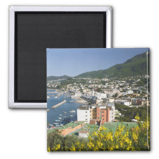 ITALY, Campania, (Bay of Naples), ISCHIA, LACCO Square Magnet